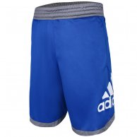 Bermuda Adidas Masculina Badge Of Sport